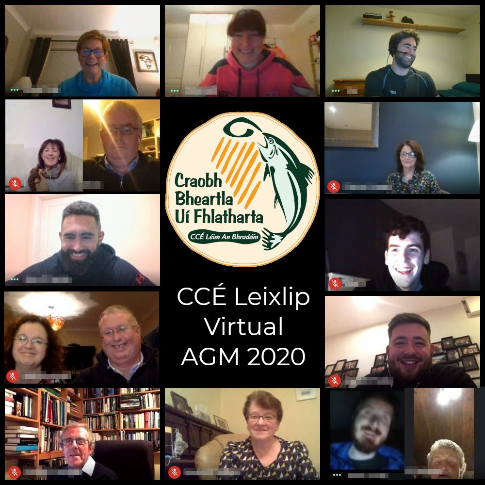 Image showing CCE Leixlip Committee members on a Video Call